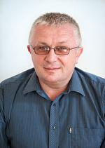 Antun Novoselović, SDP